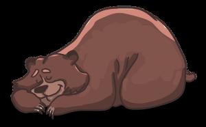 un ours qui dort bien au chaud